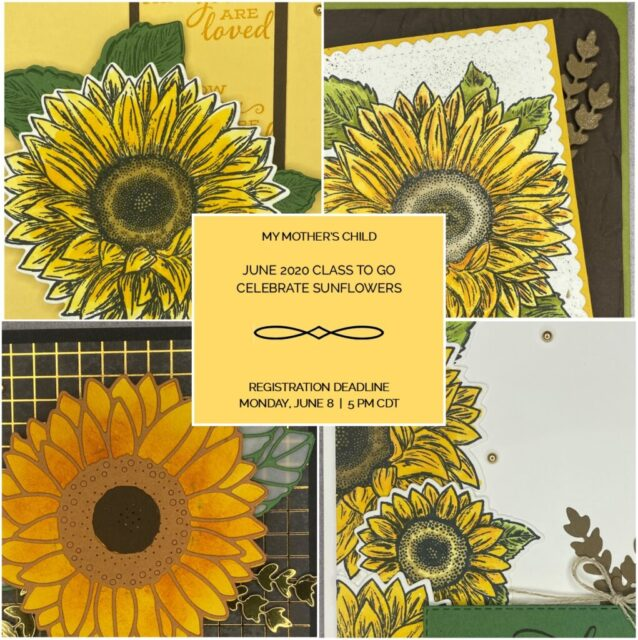 June 2020 Celebrate Sunflowers Class to Go
