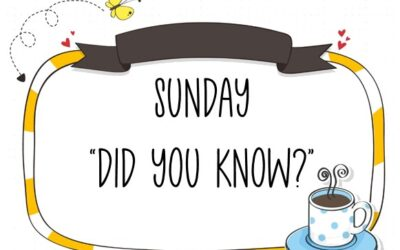 "A Sunday ""Did You Know"" about Designer Series Paper"