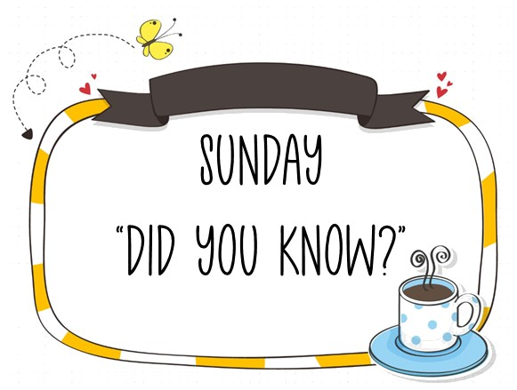"""A Sunday """"Did You Know"""" about Designer Series Paper"""